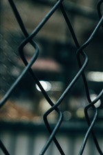 Preview iPhone wallpaper Barbed wire