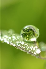 Preview iPhone wallpaper Beautiful water droplets, grass leaf, shine