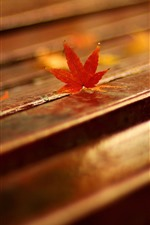 Preview iPhone wallpaper Bench, red maple leaves, hazy