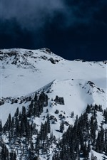Preview iPhone wallpaper Mountain, snow, trees, dark blue sky