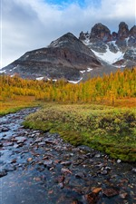 Preview iPhone wallpaper Mountains, snow, creek, rocks, trees, autumn