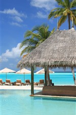 Preview iPhone wallpaper Palm trees, pool, sunbed, tropical, resort