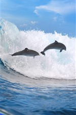 Preview iPhone wallpaper Sea waves, dolphin, water splash, underwater