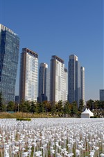 South Korea, park, skyscrapers