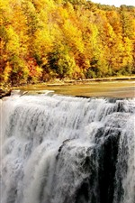 Preview iPhone wallpaper Waterfalls, trees, golden autumn