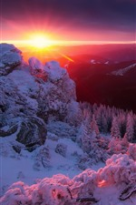Preview iPhone wallpaper Alps, mountains, snow, trees, winter, sunrise
