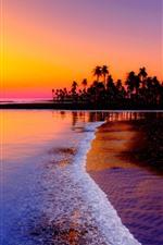 Beautiful sunset, sea, waves, beach, palm trees, sun