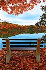 Bench, lake, red maple leaves, trees, autumn