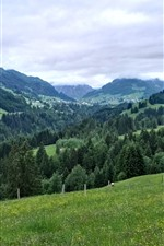 Preview iPhone wallpaper Germany, Allgau, mountains, trees, clouds, green