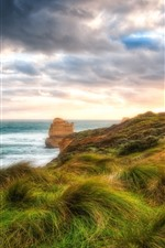 Grass, wind, sea, clouds, sunset, HDR style