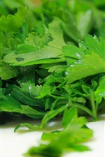 Preview iPhone wallpaper Parsley close-up