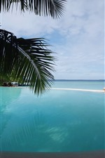 Preview iPhone wallpaper Pool, palm trees, sea, sky, clouds, resort