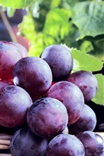 Preview iPhone wallpaper Purple grapes, bottle, leaves