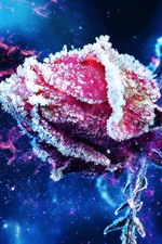 Preview iPhone wallpaper Red rose bud, frost, ice crystal, stars