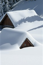 Thick snow, house hidden in snow, trees, winter