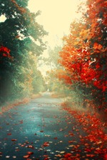 Preview iPhone wallpaper Autumn, road, maple leaves, fog