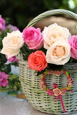 Basket, pink and white roses