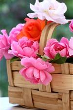 iPhone обои Корзина, розовые розы, туманные