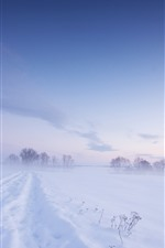 Preview iPhone wallpaper Cold winter, thick snow, white world, fog