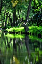 Preview iPhone wallpaper Garden, river, trees, green, summer