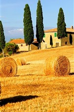 Preview iPhone wallpaper Hay bales, fields, trees, countryside, Italy