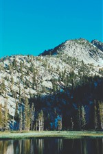 Preview iPhone wallpaper Lake, mountain, trees, nature scenery