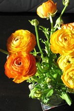 Preview iPhone wallpaper Orange and yellow peonies, flowers, bouquet