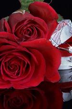Rosas vermelhas, anel, diamante, presente