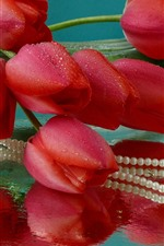 Red tulips, water droplets, beads