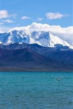 Montanhas cobertas de neve, nuvens, mar, gaivota