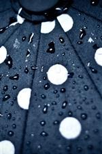 Guarda-chuva, superfície, gotas de água