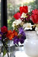 Preview iPhone wallpaper Vase, colorful flowers, window