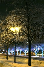 Preview iPhone wallpaper Winter, trees, snow, lights, city, street