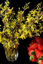 Yellow flowers and red strawberries, black background