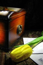 Preview iPhone wallpaper Yellow tulip, water droplets, box, mail