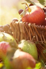 Preview iPhone wallpaper Apples, pears, grapes, basket, sunshine