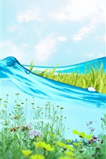 Preview iPhone wallpaper Blue water, grass, flowers, creative picture