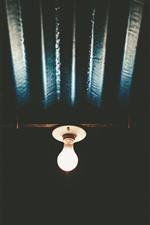 Bulb, lighting, night