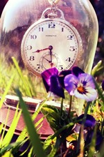 Preview iPhone wallpaper Clock, glass, pansies