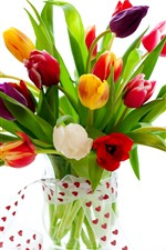 Preview iPhone wallpaper Colorful tulips, vase, bouquet, white background
