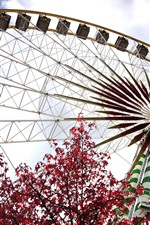 Preview iPhone wallpaper Ferris wheel, red maple leaves