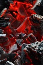 Firewood, coals, combustion