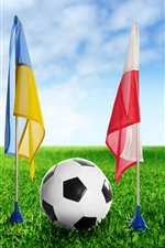 Preview iPhone wallpaper Football, flag, green grass