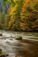 Preview iPhone wallpaper Germany, trees, river, autumn, nature scenery