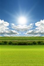 Green fields, blue sky, clouds, sun