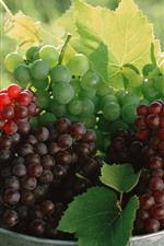 Preview iPhone wallpaper Many green and red grapes, fruit, green leaves