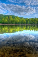 Preview iPhone wallpaper Many trees, forest, lake, water reflection, sky, white clouds