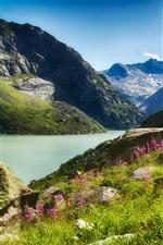 Mountains, river, stones, flowers, grass, nature landscape