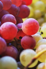 Preview iPhone wallpaper Red and green grapes, fruit close-up