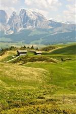 Verão, montanhas, cabana, grama verde